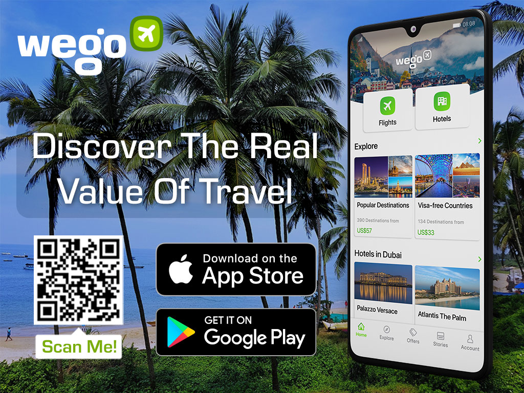 palm-line beaches in Goa - Travel travel app download