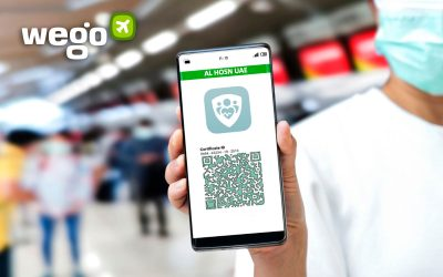 Green Pass on Al Hosn App Explained: What the New Color Codes Mean