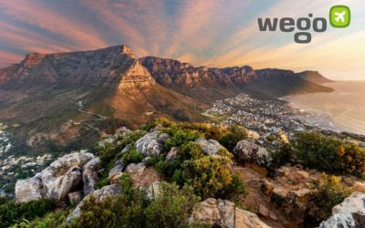 South Africa Travel Restrictions & Border Reopening - Can I Travel To South Africa?