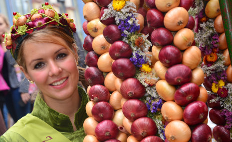 German Onion Festival - 5 Amazing Festivals to Catch in Germany