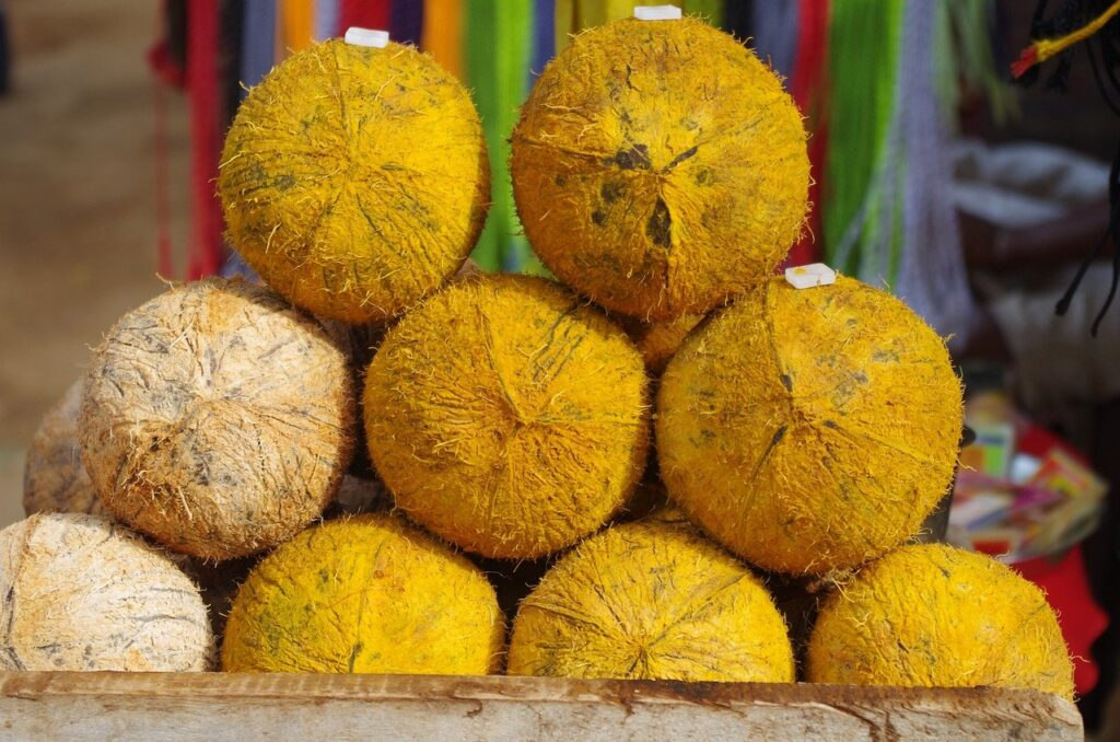 pongal coconut