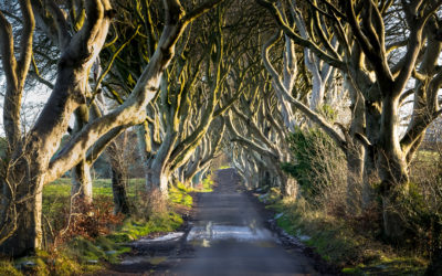 'Game Of Thrones' Filming Locations In The UK