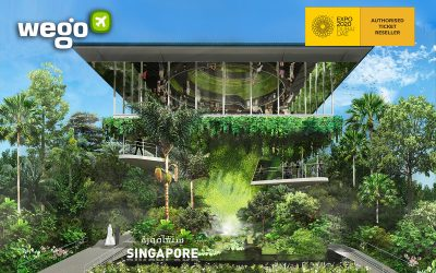 Singapore Pavilion At Expo 2020: 5 Things You Must Know Before Visiting