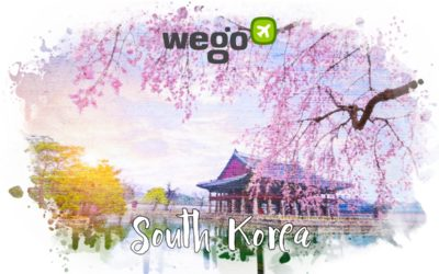 Can I Travel to South Korea? Important Things You Need to Know If You're Planning to Fly to South Korea
